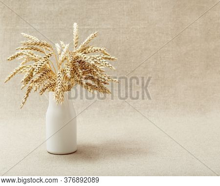 Autumn Harvest Of Grain Crops. View Of Bunch Stems With Ears Of Wheat In White Vase On Fabric Backgr