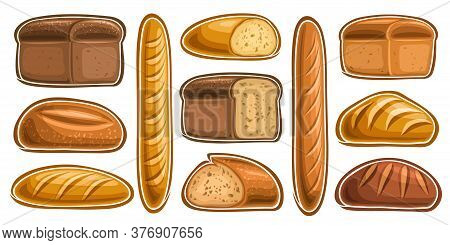 Vector Set Of Assorted Bread And Bakery, Lot Collection Of 11 Cut Out Illustrations Of Fresh Bread O