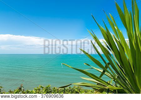 Koh Proet Island,the Green Leaves With The Backdrop Of The Emerald Green Sea And The Clear Sky.koh P