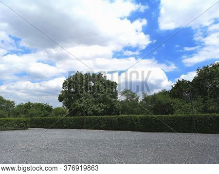 Parking Lot Sprinkled With Gravel On Tree Bush Nature Background Sky And Cloud