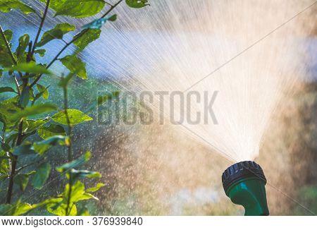 Close-up shot of backlight lawn sprinkler spaying water. Summer garden watering irrigation system concept