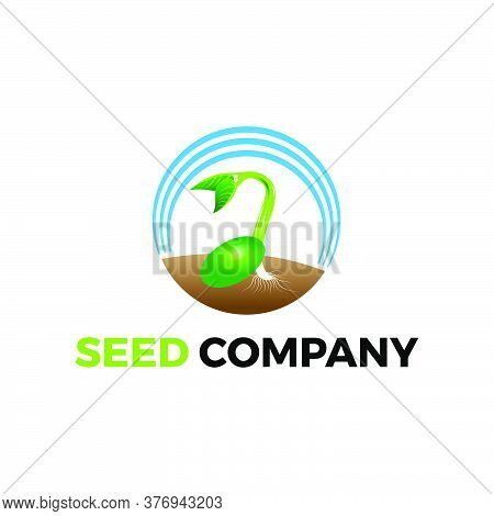 Growing Seed Logo Illustration For Environtment Agriculture Farming Gardening Company