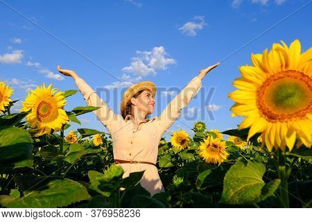 Smiling Woman In Straw Hat In Blooming Sunflower Field At Sunrise With Outstretched Arms
