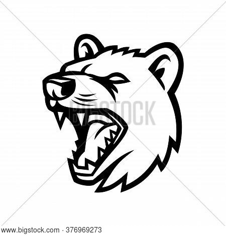 Mascot Icon Illustration Of Head Of An Angry Tasmanian Devil, A Carnivorous Marsupial Of The Family