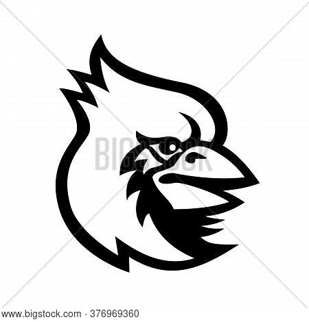 Mascot Black And White Illustration Of Head Of A Cardinal, In Cardinalidae Family, A Passerine Bird