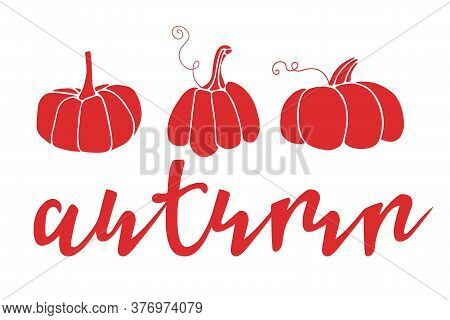 Autumn Lettering With Three Pumpkin Silhouettes. Hand Drawn Lettering. Card, T-shirt Design, Invitat
