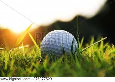 Golf Ball In Beautiful Golf Course With Sunset. Golf Ball Close Up In Golf Coures At Thailand