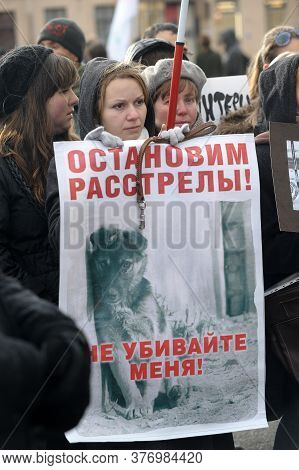 Russia, St. Petersburg, 27,10,2012 A Meeting Of Animal Protectionists Against Dog Hunters And Cruel