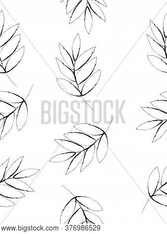 Doodle Drawing Style Image Of Black And White Walnut Leaf Seamless Background, Vector Illustration
