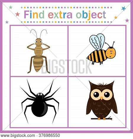 Map For Children's Development, Find An Extra Object, Theme Insects And Birds, Owl Bird Is An Extra