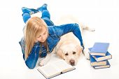beautiful girl in blue reading a book with pale-yellow Labrador retriever dog on the isolated white background poster