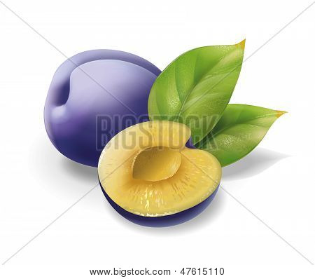 Plum pitted with leaves