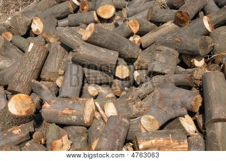 cut wood in chaotic heap outdoor background poster