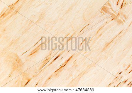 Texture Of Silver Birch Burl