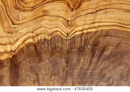 Olive Wood Texture