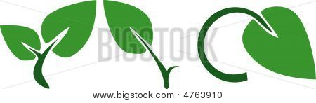 Set Of Abstract Green Leaf Icons