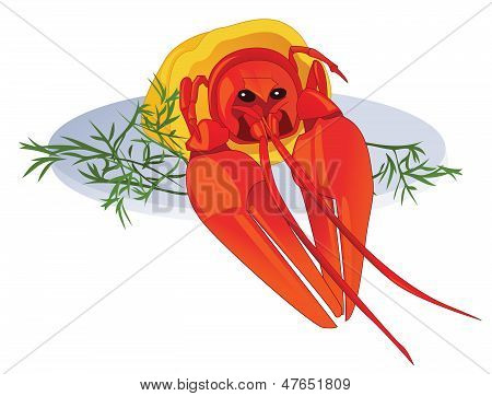 poster of Boiled cancer on dish. The color vector illustration