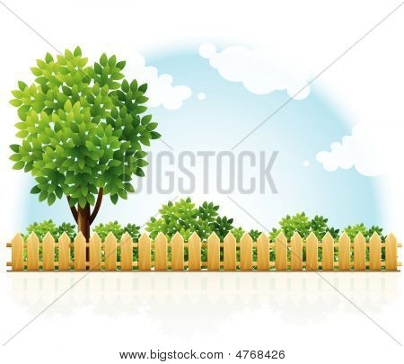 Barriered Garden Territory With Tree And Green Bushes