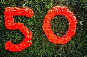 Number Fifty in red written on a bush poster
