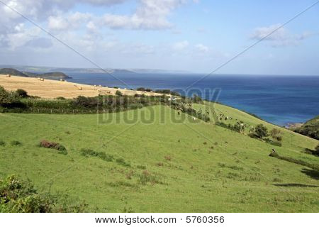 Beautiful coast / rural view of farm land and the English Channel in Cornwall, UK