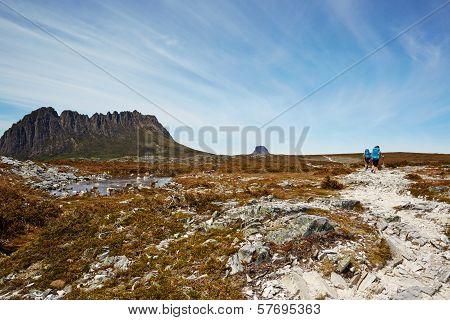 Windswept Hikers On The Desolate Overland Trail, Tasmania