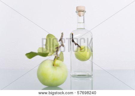 Fruit In Bottle