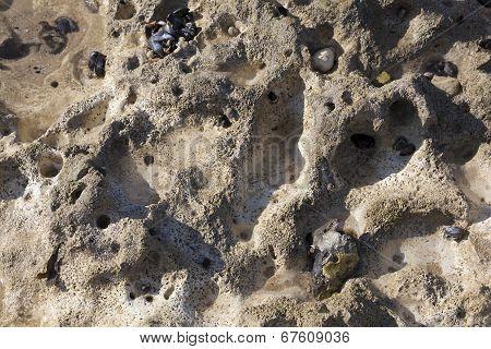 Texture In The Beach Of Dieppe, Côte D'albatre, Haute-normandie, France