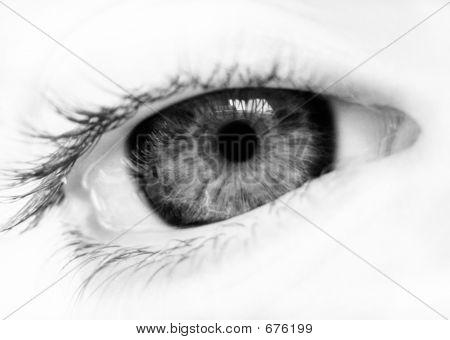 Bw Eye