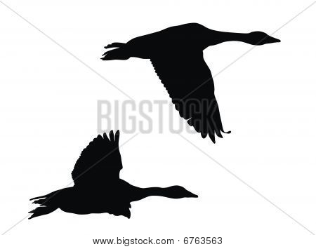 Abstract vector illustration of flying geese silhouettes poster