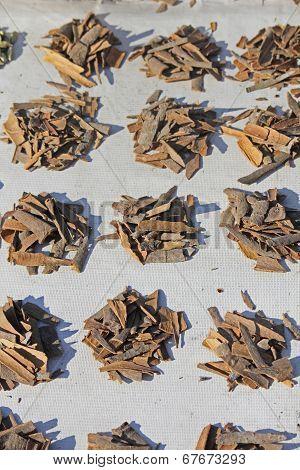 True Cinnamon Comes From The Inner Bark Of A Tree Called Cinnamomum Verum
