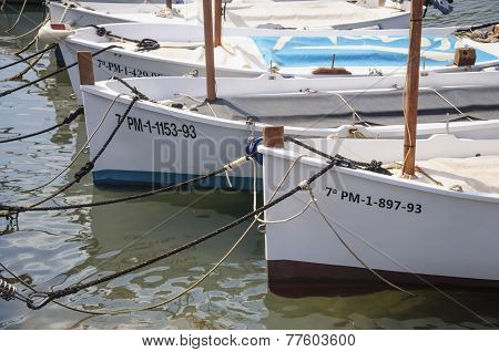 Traditional Sailboats (llauts) Moored