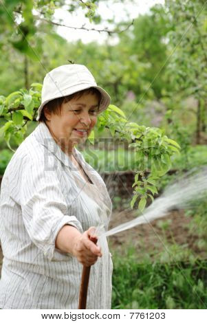 Happy Senior Woman Hoses The Garden