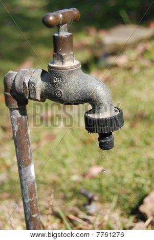 Dripping Garden Tap