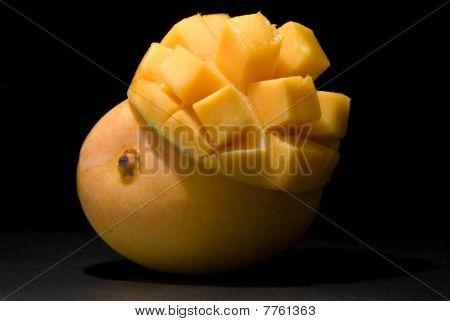 Mango Under Spotlight