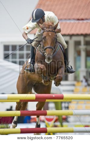 Premier Cup 2010 Show Jumping Equestrian