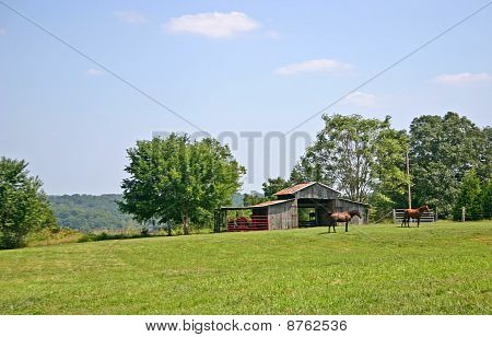 two horses graze in a pasture in front of a small barn poster