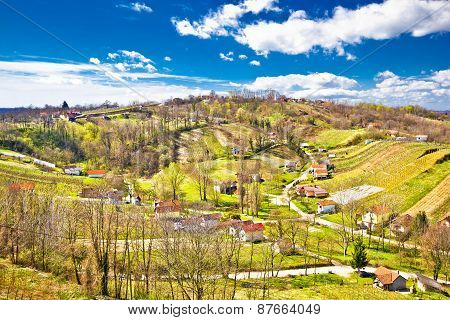Zagorje Region Green Vineyard Hills