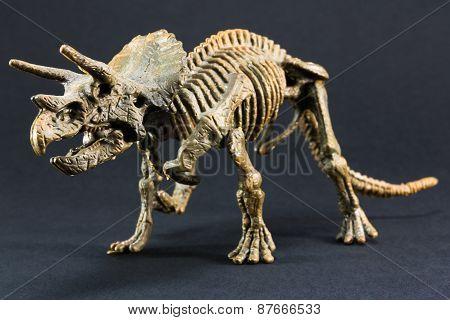 Triceratops Fossil Dinosaur Skeleton Model Toy