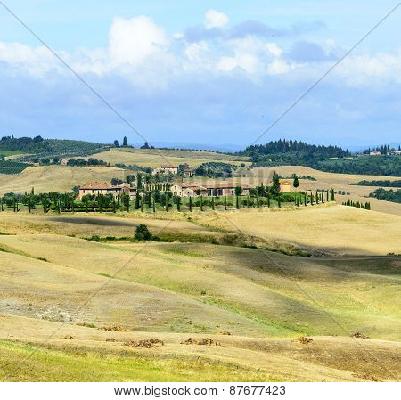 Crete senesi characteristic landscape in province of Siena (Tuscany, Italy) at summer. poster