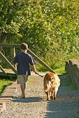 young boy walking dog on a sunny autumn day poster