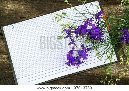 Bouquet Of Blue Larkspur Flowers And Notebook For Recording