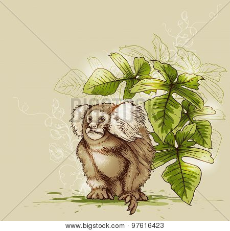 Monkey And Green Tropical Plant