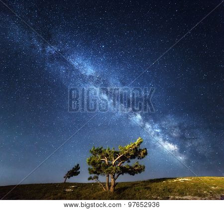Milky Way. Beautiful summer night sky with stars in Crimea. poster