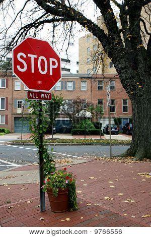Stop Sign In Washington