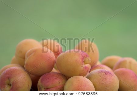 Apricots Against A Green Background