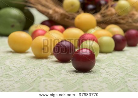 Cherry Plums Group Selective Focus