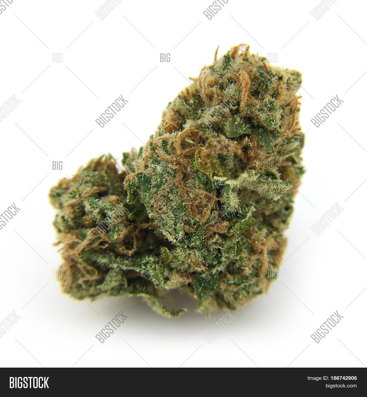 Dried Cannabis Flower Image Photo Free Trial Bigstock