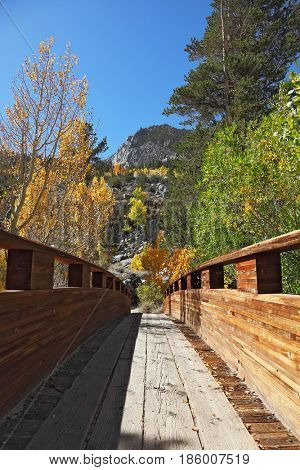 A small wooden bridge over a mountain stream. Fine autumn day in the mountains