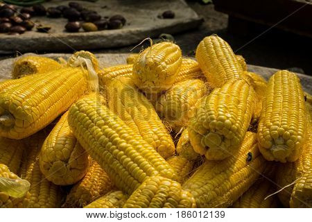 stacked Peeled corn on sale in traditional market photo taken in Bogor Indonesia java