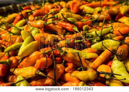 Red Cayenne pepper on sale in traditional market photo taken in Bogor Indonesia java
